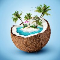 Coconut_travel