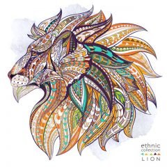 illustrated-lion