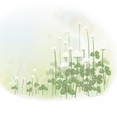 farm_flowers4