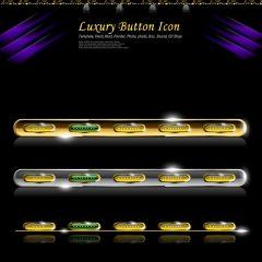 luxury_icon3