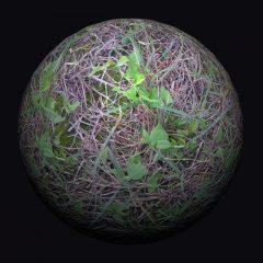 دانلود متریال سه بعدی خاک , چمن و بوته