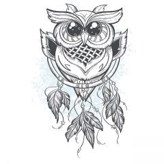 sketch_owl