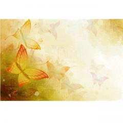 butterflies_flowers3
