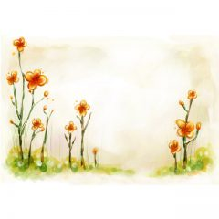 orange_flowers1