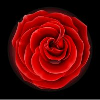 red_flower10