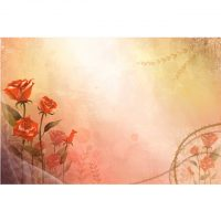 red_flower12