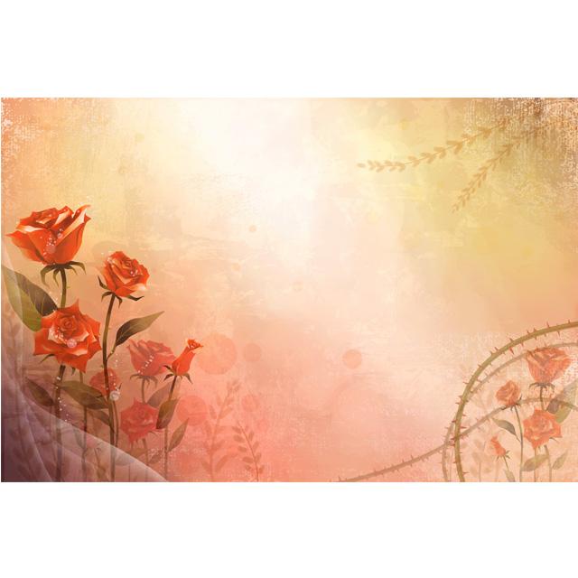 دانلود پس زمینه گل سرخ خار دار