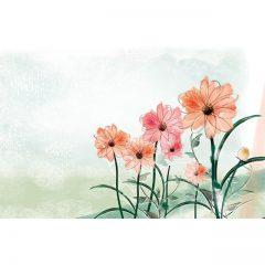 red_flower8