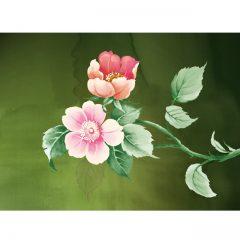 shrub_roses3