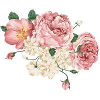 pink_rose7
