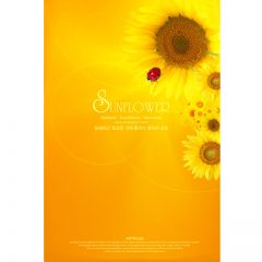 sunflower11