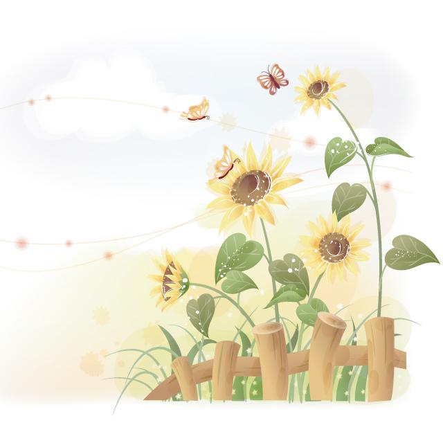 دانلود پس زمینه مزرعه گل افتاب گردان