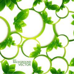 green_leaf_rings