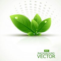 natural_green_vector_leaf