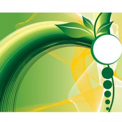 دانلود وکتور پس زمینه طرح گیاه سبز