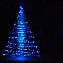 دانلود وکتور درخت کاج نوری ابی