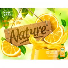 دانلود وکتور تکه های میوه و ابمیوه پرتقال گرافیکی