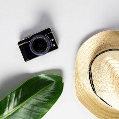 دانلود تصاویر استوک دوربین دیجیتال و برگ سبز