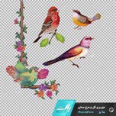دانلود فایل دوربری شده گل و مرغ سنتی همراه با پرنده در ابعاد 2000 در 2000