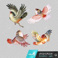 دانلود فایل دوربری شده گل و مرغ سنتی با پرنده های در حال پرواز در ابعاد 2000 در 2000
