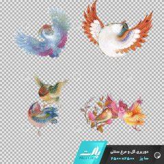دانلود فایل دوربری شده گل و مرغ سنتی با 7پرنده با رنگ های شاد در ابعاد 2500 در 2500