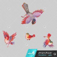 دانلود فایل دوربری شده گل و مرغ سنتی با 4 پرنده در سبک رنگی صورتی در ابعاد2000 در 2000