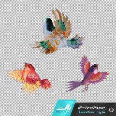دانلود فایل دوربری شده گل و مرغ سنتی با 3 پرنده در تم رنگی صورتی در ابعاد2000 در 2000