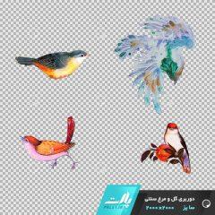 دانلود فایل دوربری شده گل و مرغ سنتی با 4 پرنده در تم رنگی مختلف در ابعاد2000 در 2000