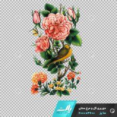 دانلود فایل دوربری شده گل و مرغ سنتی شماره 1 در ابعاد 3600 در 2000