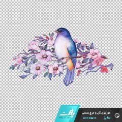 دانلود فایل دوربری شده گل و مرغ سنتی بوته ای با تم رنگی صورتی در ابعاد 500 در 800
