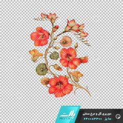 دانلود فایل دوربری شده گل و مرغ سنتی نارنجی شماره 2 در ابعاد 3300 در 2400
