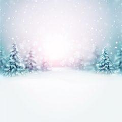 پس زمینه جذاب با طراحی جنگل زمستانی و برف