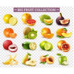 دانلود وکتور کالکشن میوه های متنوع با رنگ و طرح جذاب