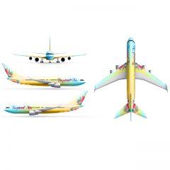 دانلود وکتور لایه باز هواپیمای مسافربری با رنگبندی زیبا