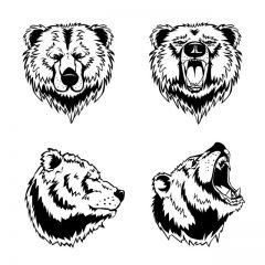 دانلود وکتور جدید خرس وحشی