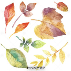 وکتور برگ های پاییزی درختان
