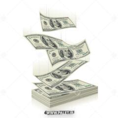 وکتور بسته های دلار گرافیکی