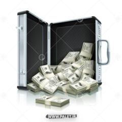 وکتور کیف بسته های دلار