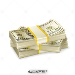 وکتور بسته های پول دلار و یورو