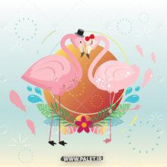 دانلود وکتور کارتونی فلامینگو عاشق